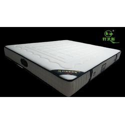 浏阳好莱斯|湖南床垫经销商|湖南床垫供应图片