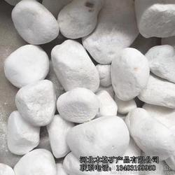 厂家供应鹅卵石 白石子雨花石 多肉石花卉鱼缸装饰图片