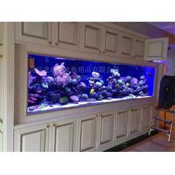 龙鼎轩 南京大型鱼缸设计(墙内鱼缸) 嵌入式鱼缸图片