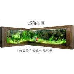 龙鼎轩-茶几 吧台鱼缸-南京定制鱼缸图片