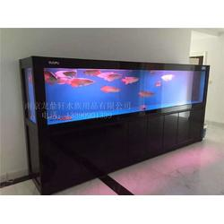 选购鱼缸|南京鱼缸定做|南京鱼缸定做图片