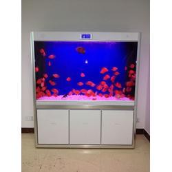 亚克力鱼缸-南京鱼缸定做-南京鱼缸定做图片
