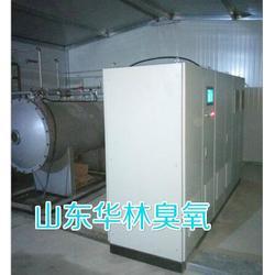 大型臭氧發生器型號圖片