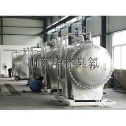 OZOHL-300臭氧發生器圖片