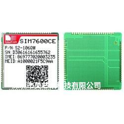 SIM7600CE+W58带WIFI模块图片