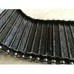 排屑机链板 机床排屑机刮板 排屑链条厂家图片