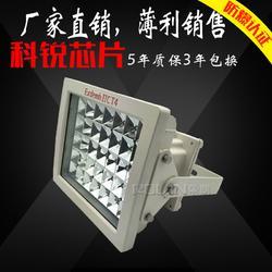 BLD170-40WLED防爆灯 优质防爆照明灯图片