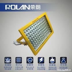 食品加工厂LED防爆灯100W图片