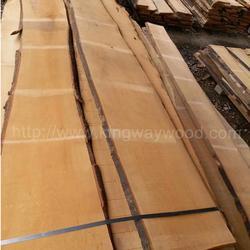 德国金威木业 欧洲进口榉木 板材 毛边板 实木 木板 26mm AAB级 水青冈 欧洲进口木材图片