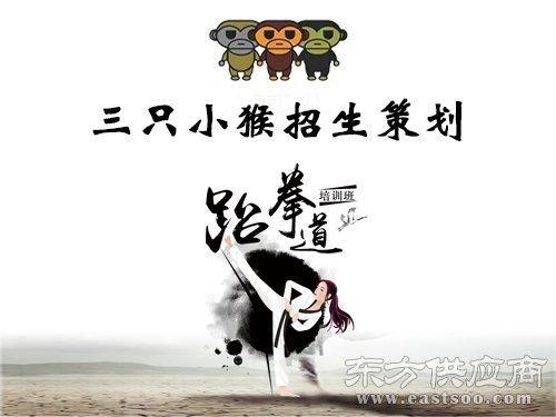 少儿武术招生方案设计,招生方案设计,三只小猴(查看)图片