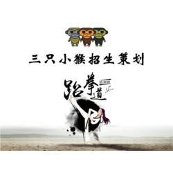 原阳跆拳道招生 山东三只小猴文化传媒 跆拳道招生方案大全