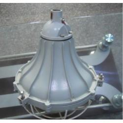 BAD-DIP粉尘防爆灯壁式90°规格报价图片