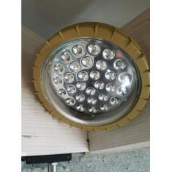 全国供应BDZ-100W防爆免维护低碳LED照明灯(IIC丶DIP)图片