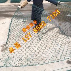 护脚格宾石笼规格 固滨笼施工方案 蜂巢绿滨垫 雷诺护垫护脚护岸图片
