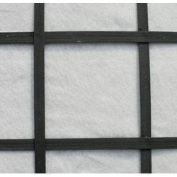 钢塑复合土工格栅多少钱图片