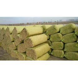 玉米网袋-华佳绳业(在线咨询)网袋图片