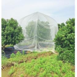 厂家直销优质加厚纯新料果树防虫网使用寿命长图片