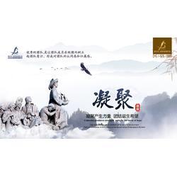 金北方|商业印刷|哈尔滨专业商业印刷图片