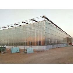 智能玻璃大棚,青州瀚洋农业,玻璃大棚图片