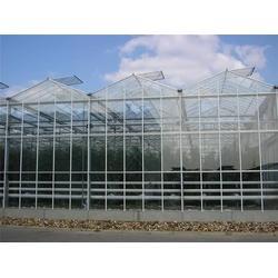 智能大棚温室|青州瀚洋农业(在线咨询)|泊头温室图片