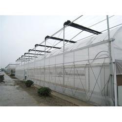 温室大棚,青州瀚洋农业,茄子温室大棚图片