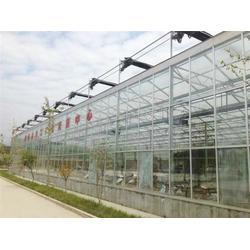 中空玻璃温室报价-中空玻璃温室-青州瀚洋农业(查看)图片