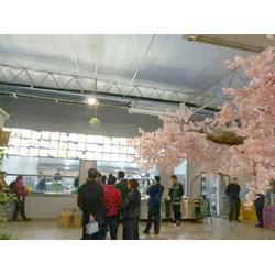 青州瀚洋农业 玻璃温室设计-玻璃温室图片