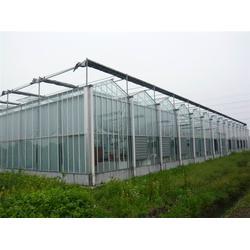 玻璃温室-青州瀚洋农业-穹顶玻璃温室图片