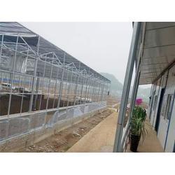福建智能温室图片