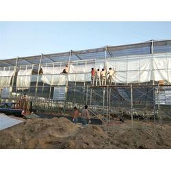 玻璃大棚用途-玻璃大棚-青州瀚洋农业图片