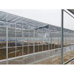 玻璃温室图纸-青州瀚洋农业(在线咨询)玻璃温室图片