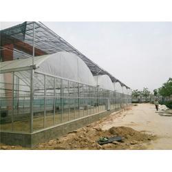 薄膜连栋-供应薄膜连栋温室-青州瀚洋农业(优质商家)图片