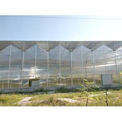 玻璃大棚-青州瀚洋农业-观光玻璃大棚图片