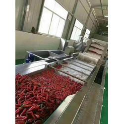 蔬菜气泡清洗机品质好-诸城神龙机械-蔬菜气泡清洗机图片