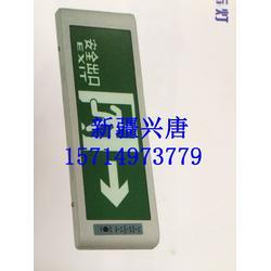 URA01A出口指示灯,NEP51双头事故应急灯具,NEP52 XL消防指示灯图片