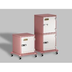 低氧气调储藏柜图片