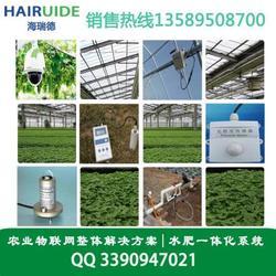 农业物联网土壤温湿度传感器的功能特点图片