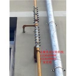 供应户外排水管道防爬刺 不锈钢防爬刺 防爬刺规格 防盗刺厂家批发