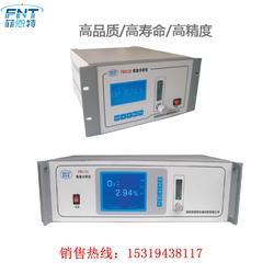菲恩特 FN311B在线常量氧分析仪 氧量分析仪图片