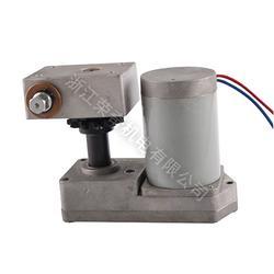 高压真空断路器配件VS1永磁直流电机图片
