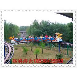 新型儿童游乐设备滑行龙郑游游乐图片