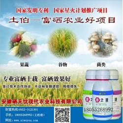 有机硒蔬菜专用营养液富硒蔬菜种植肥料什么土地可以种植富硒蔬菜图片
