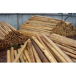 巴西木材进口报关行进口清关行图片