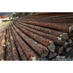 马来西亚越南木材进口怎么报关图片