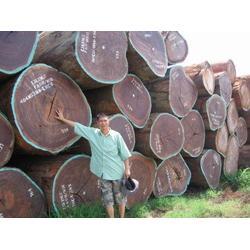 越南马来西亚木材进口报关代理公司图片