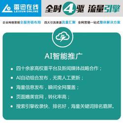 网络推广就选烟台雷迅-工业品英文网站开发-芝罘区英文网站开发图片