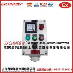 防爆操作柱控制箱电表指示带灯按钮定做图片