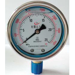 耐振压力表型号规格,量程,精度图片