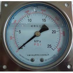 方边盘装耐震压力表YN100ZQ图片