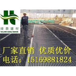20高车库绿化排水板 30高蓄排水板厂家现货图片